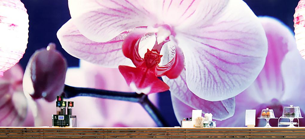 Blumen, Still Life, Orchidee, Wand-Gestaltung, Messegastronomie, Lotus Inn, Messe Frankfurt, Ambiente, Tendence, still-life_foto_frankfurt_interior_klewar-photographie_813042k